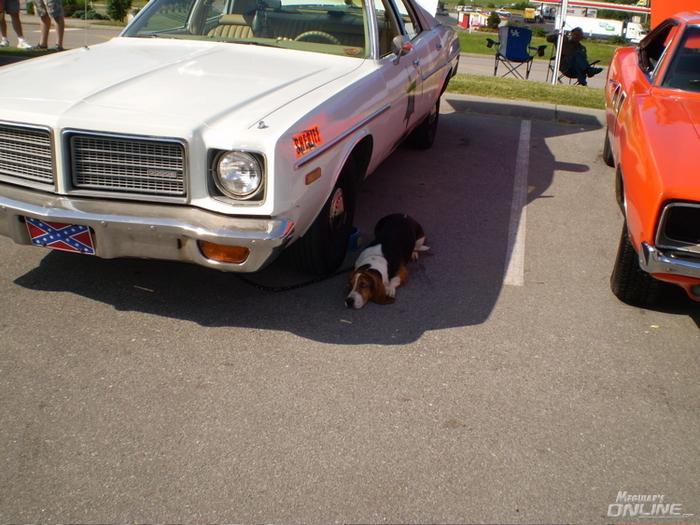 Hazzard County Sheriff Car For Sale